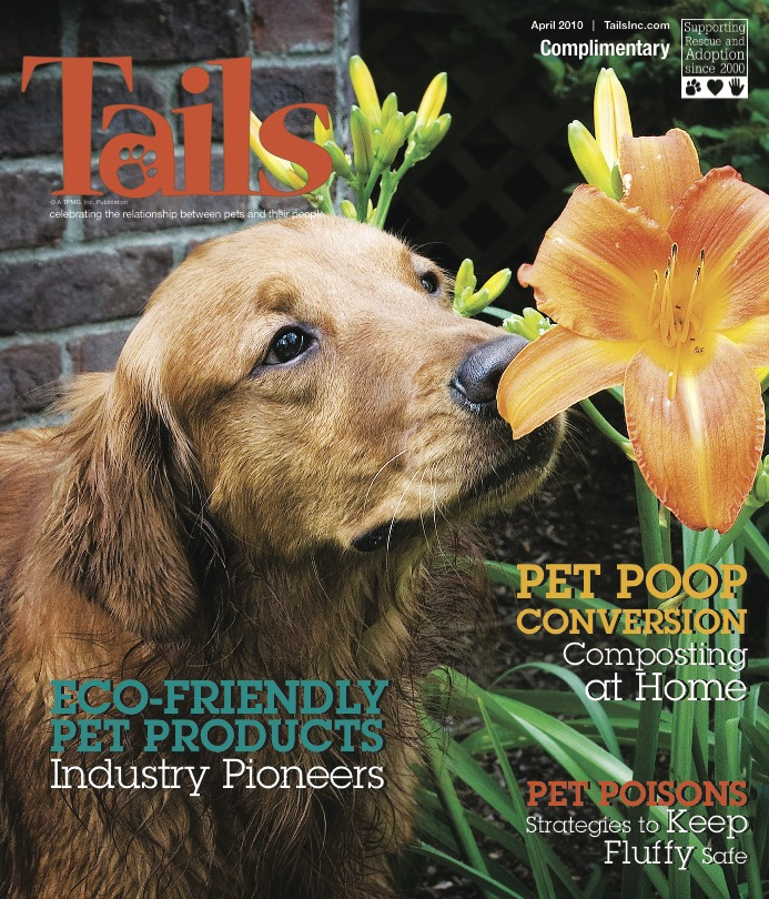 "Louisville Golden retriever ""Simon"" makes the cover of a national magazine."
